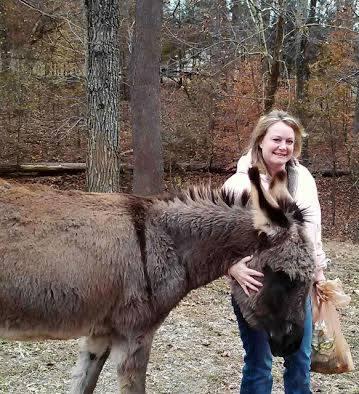 Poncho (donkey)